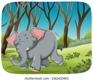 Elephant running in the woods illustration