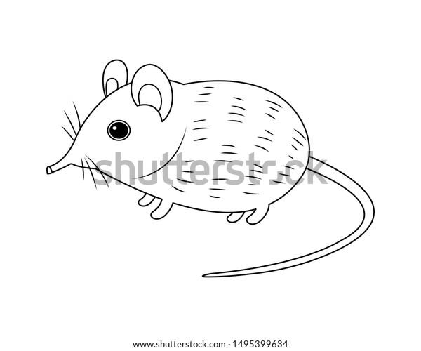 elephant shrew vector cartoon colorless