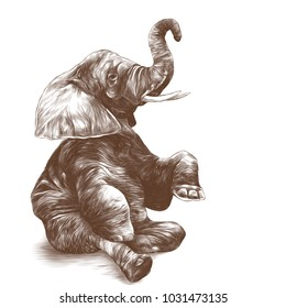 elephant sitting with raised trunk, sketch vector graphic monochrome drawing