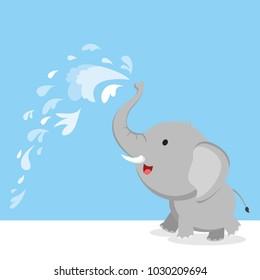 Elephant spray water with trunk