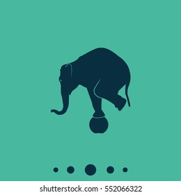 Elephant standing on a ball icon. Flat animal illustration.