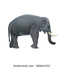Elephant standing. Side view. Vector illustration isolated on the white background