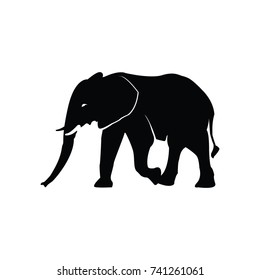 Elephant Vector Designs Silhouette
