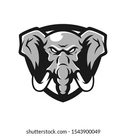 Elephant vector mascot. Head of African elephant. Emblem design for sport team.