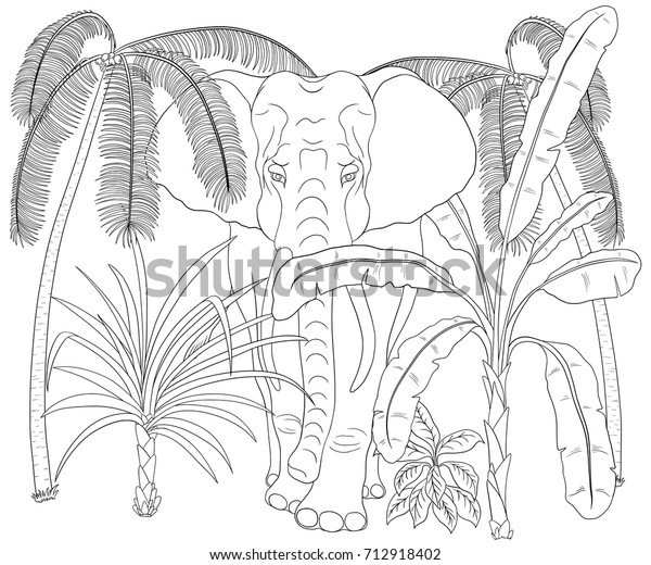 Elephant Walk Through Jungle Coloring Book Stock Vector (Royalty ...