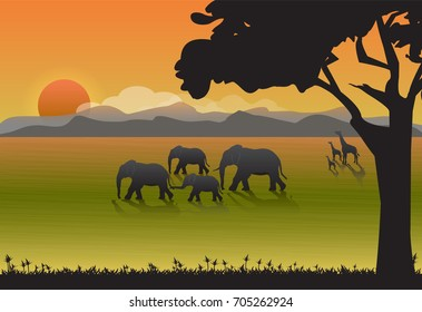 Elephants and Giraffe family in meadow. Nature  background