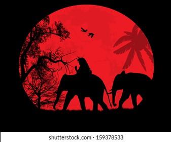 Elephants in Thailand over orange sunset, vector illustration