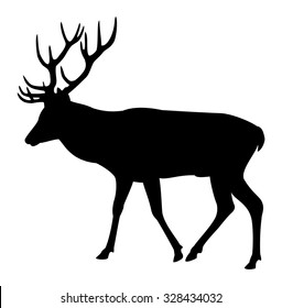 Elk deer silhouette on a white background