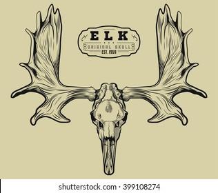 Elk skull Engraving style. Moose Skull with horns