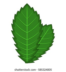 Elm leaf icon. Cartoon illustration of elm leaf vector icon for web