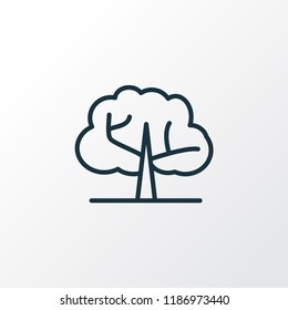 Elm tree icon line symbol. Premium quality isolated ecology element in trendy style.