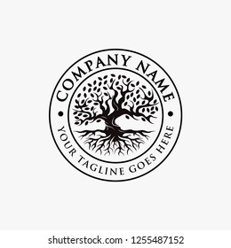 Emblem, seal, emblem vintage Logo of tree of life, old oak tree, old big tree with the root