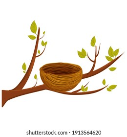 Empty bird nest from twigs on tree branch with leaves isolated on white background. Spring time, vector clipart, brown wooden construction, home from sticks. Detailed, bright object.