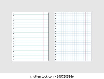 Empty sheets of school exercise book are checkered and linear. Vector illustration.
