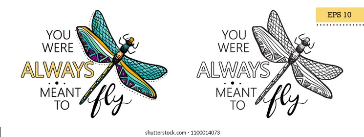 "Encourage lettering quote. ""You were always ment to fly"", with hand drawn dragonfly. Colored and black version. Vector illustration, EPS 10"
