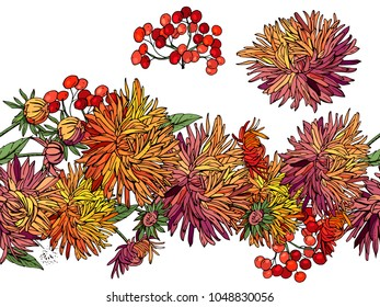 Endless pattern brush with autumn flowers aster and red berries. Horizontal border for season design