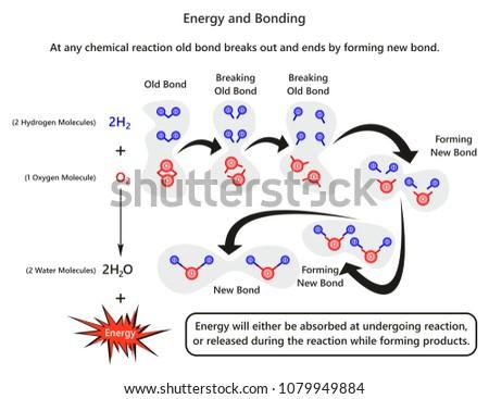 energy bonding infographic diagram example forming stock vector