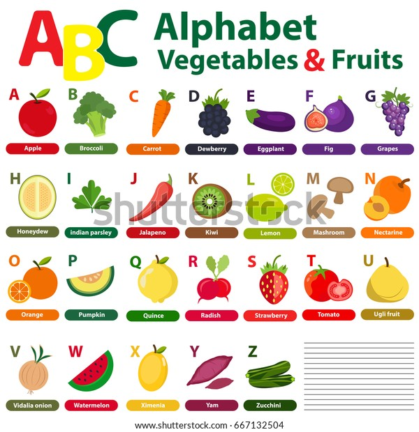 English Alphabet Kids Fruits Vegetables Back Stock Vector (Royalty Free)  667132504