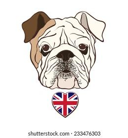 English bulldog face with  heart flag UK. Hand-drawn vector illustration, sketch.