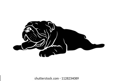 English bulldog lying down - vector illustration