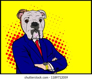 English bulldog wearing a suit, with Crossed Arms. Business Man With Animal Head. Vector Pop Art illustration in retro comic book vintage style