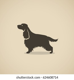 English Cocker Spaniel dog - vector illustration