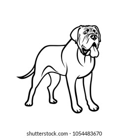 English mastiff dog - isolated vector illustration