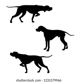 English pointer dogs silhouettes. Vector illustration isolated on white background