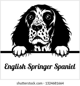 English Springer Spaniel - Peeking Dogs - breed face head isolated on white - vector stock