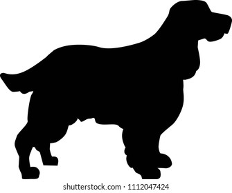 English Springer Spaniel silhouette real in black