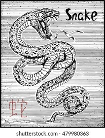 Engraved illustration of zodiac symbol with Snake and lettering. Horoscope and astrological vector sign of asian new year calendar. Graphic line art with animal. Chinese hieroglyph means Snake