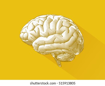 Engraving brain illustration with long shadow on yellow background