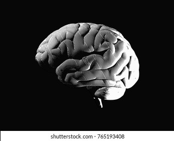 Engraving brain side view with dark lighting mood drawing on black background