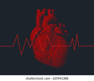 Engraving colorful red human heart illustration on dark background with heart rate pulse beat