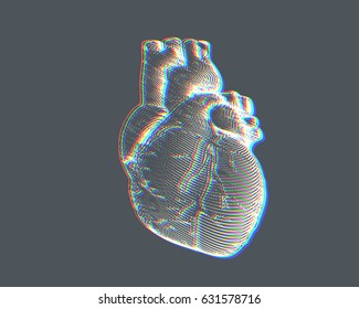 Engraving human heart illustration isolated on gray background with chromatic abberation effect