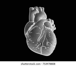 Engraving negative human heart with monochrome flow line art stroke on black background