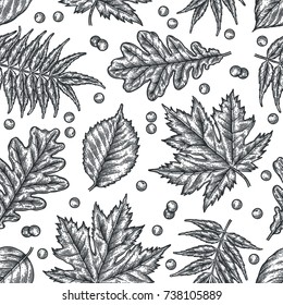 Engraving seamless pattern of leaves and berries. Detailed hand drawn autumn background.