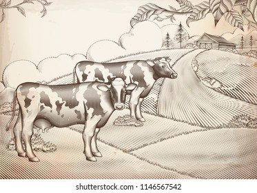 Engraving style dairy cattle and farmland background design