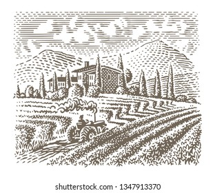 Engraving style illustration of an european vineyard (farm). Vector.
