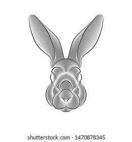 Engraving of stylized rabbit portrait on white background. Line art. Stencil art