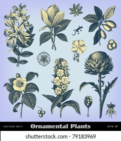 """Engraving vintage plant set from """"The Complete encyclopedia of illustrations"""" containing the original illustrations of The iconographic encyclopedia of science, literature and art, 1851. Vector."""