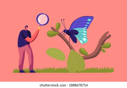 Entomologist Scientist or Amateur Character Search and Study Butterfly Insects in Wild Nature and Fauna. Man with Magnifier Entomology Hobby or Professional Occupation. Cartoon Vector Illustration