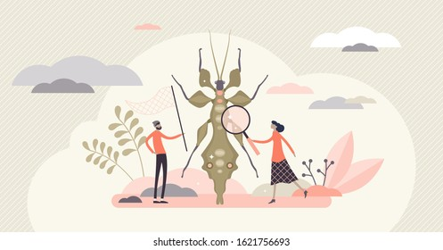 Entomology field concept, flat tiny person entomologists vector illustration. Catching insects and gathering closeup data. Research work for agriculture, biology and molecular science industries.