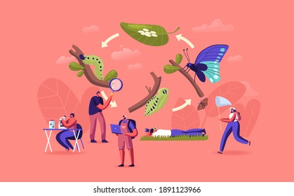 Entomology Hobby or Professional Occupation. Entomologists Scientists or Amateurs Characters Create Homemade Insect Collection, Search and Study Wild Nature, Fauna. Cartoon People Vector Illustration