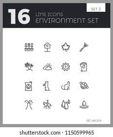 Environment icons. Set of  line icons. Star, palm, volcano. Nature concept. Vector illustration can be used for topics like ecology, ecosystem