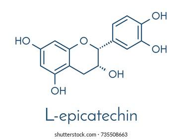 Epicatechin (L-epicatechin) chocolate flavonoid molecule. Skeletal formula.