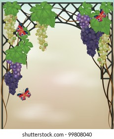 Eps 10 vector - autumnal vintage background with grapes and butterflies