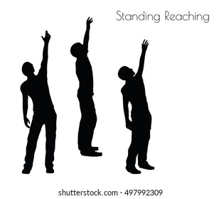 EPS 10 vector illustration of a man in Standing Reaching  pose on white background
