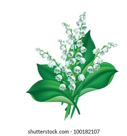 EPS 8/ Flowers and leaves of lily of the valley {Convallaria majalis}
