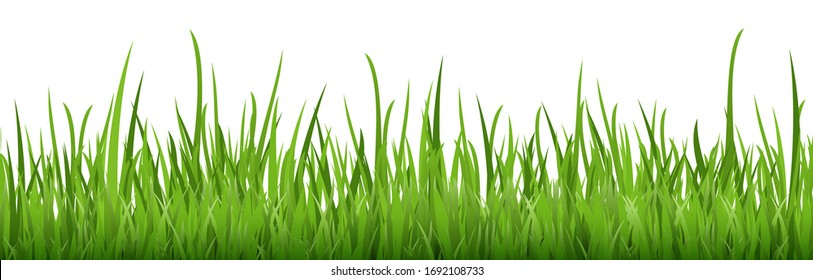 eps vector background template file of seamless panorama green summer grass on lower side for summer or spring designs